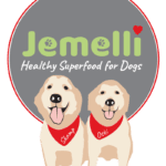jemelli-final-logo-file-150x150